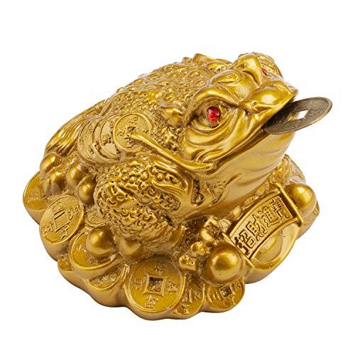 Wschic Feng Shui Money Frog, Lucky Money Toad...