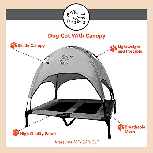 best camping chairs for dogs