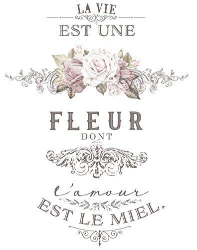 Prima Marketing 655350633004 L'Amour Est Le Miel Redesign Transfer Home Décor, Multicolor