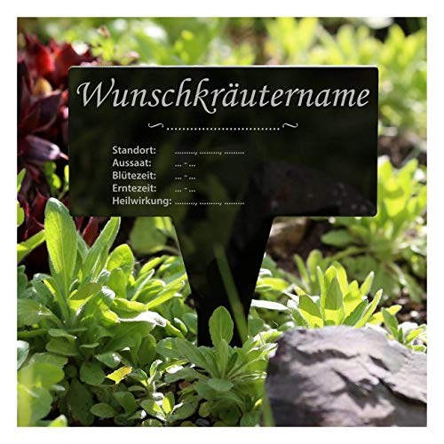 Bütic GmbH acrylglas kruiden plantenbord vierkant zwart - tuinsteker kruidenschilden Kümmel