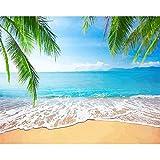 Kit de pintura de bricolaje por números,Playa soleada pintura acrílica de bricolaje de 16 x 20 pulgadas sin marco