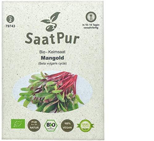 SaatPur Bio Keimsprossen - Mangold (Rot) Sprossen, Aussaat in Erde Microgreen - 30g