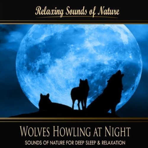 Wolves Howling At Night (Nature Sounds)