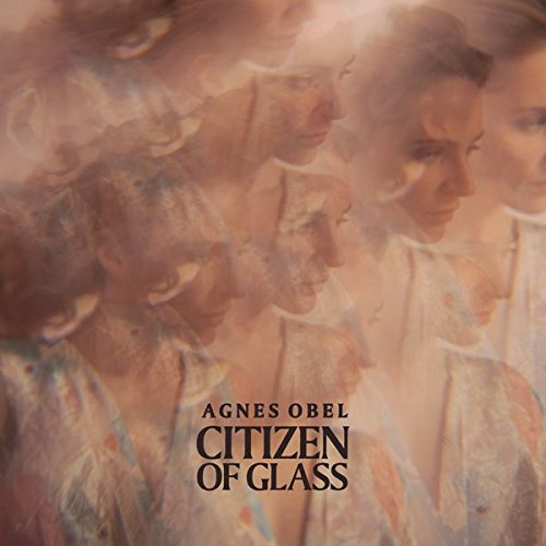 Citizen of Glass [Vinyl LP]