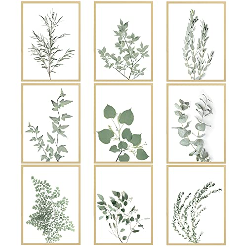 Outus 9 Pieces Botanical Plant Wall Art Prints Botanical Art Posters Boho Wall Decor Minimalist Wall Art Poster Eucalyptus Leaves Boho Pictures Plant Wall Decor for Home Bedroom, 8 x 10 Inch