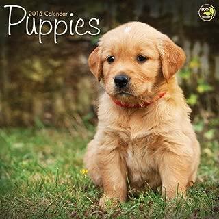 2015 Puppies Wall Calendar