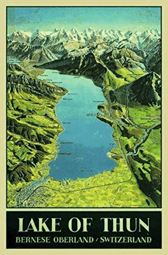 FS Lake Thun Thunsee kaart Zwitserland blikken bord gewelfd Metal Sign 20 x 30 cm