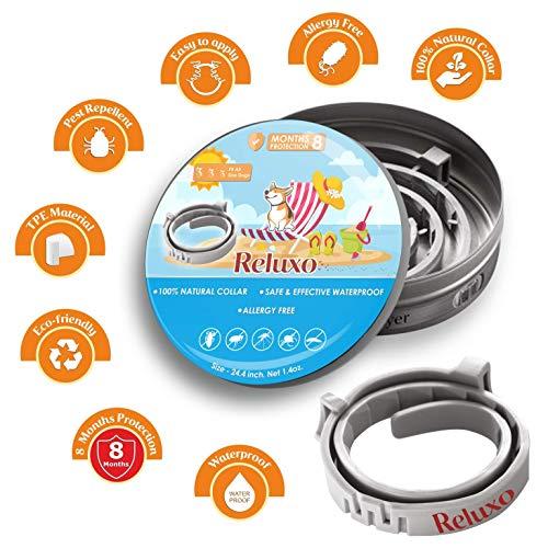 Eheim 2401020 Innenfilter aquaball 60 mit Filterpatrone und Mediabox - 5