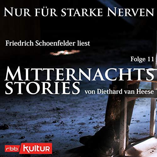 Couverture de Mitternachtsstories von Diethard van Heese