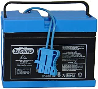 Peg Perego Blue Battery 12 Volt (Drop Ship Pack) by Peg Perego IAKB0501
