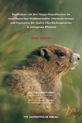 Replikation von drei Säuger-Hepadnaviren im Amerikanischen Waldmurmeltier (Marmota monax) und Expression der viralen Oberflächenproteine in transgenen Pflanzen (Edition Scientifique)