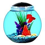 1 Gallon Globe Fish Bowl with LED Light Made of Break-Resistant Plastic - Skroutz Deals
