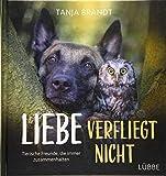 Liebe verfliegt nicht: Tierische Freunde, die immer zusammenhalten - Tanja Brandt