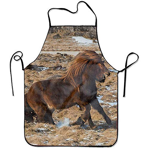 Keuken Apron,Pinafore, Professionele Koken Apron,Het IJslandse Paard Verstelbare Zwarte Nek Band - Keuken Schort Voor Koken, Grill En Bakken