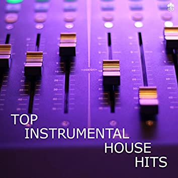 Top Instrumental House Hits