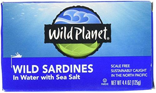 Wild Planet Sardine Quellwasser – 125 ml