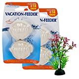 Penn-Plax Pro-Balance 14-Day Vacation Time-Release Dissolving Feeding Blocks Fish Shape 2 Packages of 2 Blocks Each (4 Blocks Total) PBV14N with 4in Plastic Plant