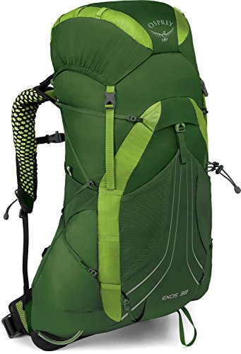 Osprey Exos 38 Hiking Pack, Hombre