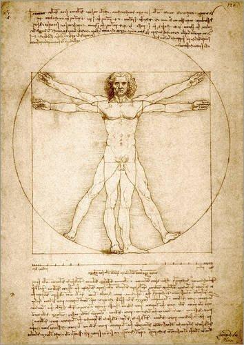 Poster 50 x 70 cm: Vitruvianischer Mensch von Leonardo da Vinci/Stocktrek Images - hochwertiger Kunstdruck, neues Kunstposter