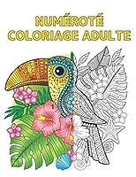Numéroté Coloriage Adulte: Livre Coloriage avec 60 Dessins de Couleurs par Numéro d'animaux, d'oiseaux, de fleurs et de motifs Coloriage Numéroté Livre de Coloriage Stress Soulagement Coloring By Numbers Book ( Livre de Coloriage pour Adulte )
