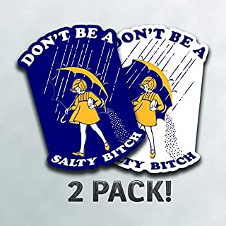 More Shiz Don't Be A Salty Bitch (2 Pack) Vinyl Decal Sticker - Car Truck Van SUV Window Wall Cup Laptop - Two 3 Inch Decals - MKS1024