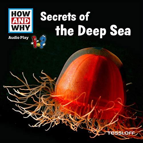 Secrets Of The Deep Sea Titelbild