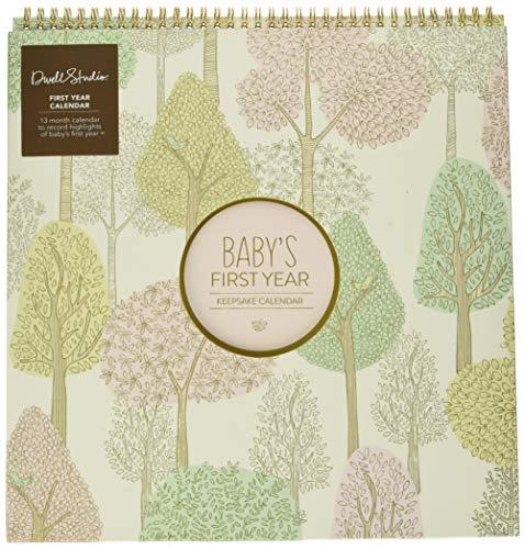 C.R. Gibson Woodland Themed First Year Calendar for Babies and Newborns by DwellStudio, 11' x 18'