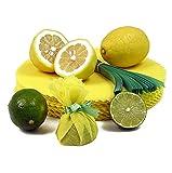 The Original Lemon Wraps - Zitronenserviertuch, gelb, mit grüner Krawatte, 100 St BEUTEL