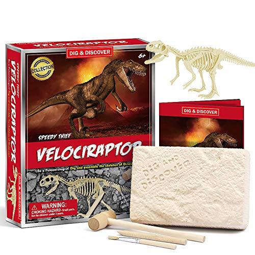 HJG DIY Dinosaurier Ausgraben und Dino Fossil Kit für Kinder, Dig Up Dinosaurier-Knochen von T Rex und Stegosaurus, 3D-Skelett Dinosaurier-Grabungs-Kit Spielzeug,#8