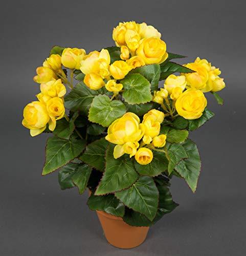 Seidenblumen Roß Begonie 38cm gelb im Topf LM Kunstpflanzen Kunstblumen künstliche Blumen Pflanzen Begonienbusch
