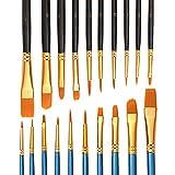 IWILCS 20 Piezas Pinceles para Pintura, Pintura al óleo y acrílico, Pincel para Acuarela, Pincel acrílico, Pincel para Artista, Pincel de Pintura(Azul y Negro )