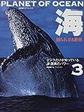 海―知られざる世界〈3〉クジラだけが知っている・波 驚異のパワー (NHKスペシャル)