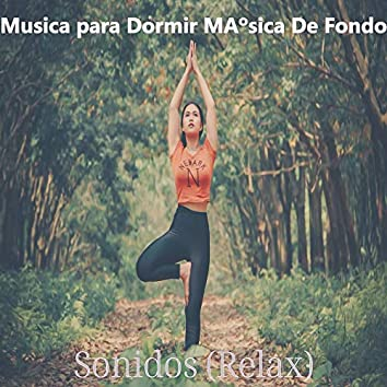 Sonidos (Relax)