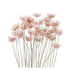 JIANS 20/30/50/LotNatural Dried Flowers Artificial Fake Rabbit Tail Grass Bouquet Long Bunches Wedding Party Home Decor-LP-50PCS-