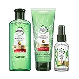 Herbal Essences Pure Shampoing Aloe Mangue 225ml, Après Shampoing Aloe Mangue 180ml et Huile Capillaire Aloe Noix de Coco, 96% d'Origines Naturelles, Sans Sulfates