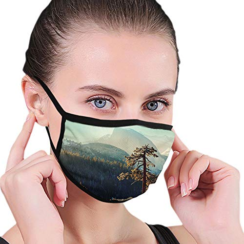 Mouth Cover for Women,Face Mask Reusable Washable Cloth for Men Yosemite National Park from The Top of Mountain Misty