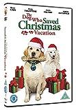 The Dog Who Saved Christmas Vacation [DVD] [Reino Unido]