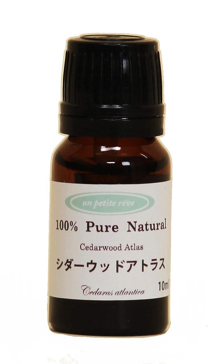 風変わりなみすぼらしい控えるシダーウッドアトラス 10ml 100%天然アロマエッセンシャルオイル(精油)