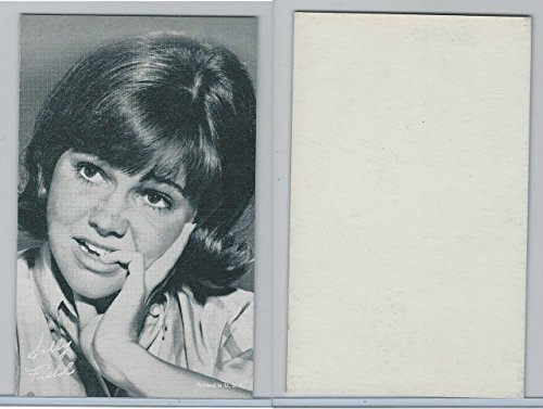 1960's Exhibit, Female TV Actress, Sally Field, Flying Nun, ZQL
