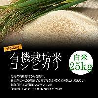 低農薬米コシヒカリ 白米(精米) 25kg(5kg×5袋)/化学肥料ゼロで育てた新潟産有機米