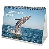 Walzauber - Calendario de mesa 2019, DIN A5, diseño de ballena, submarino, buceo, peces y mar