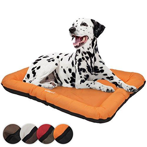 Leopet Komfortables Hundebett in 4 Größen und in 4 Farben gegen Kratzen widerstandsfähig und leicht abwaschbar mit pflegeleichter Kunststoffoberfläche
