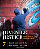 Image of Juvenile Justice: A Guide to Theory, Policy, and Practice