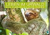 Leben im Urwald: ein Paradies für Tiere (Tischkalender 2021 DIN A5 quer)