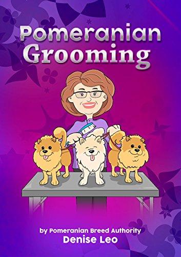 Pomeranian Grooming