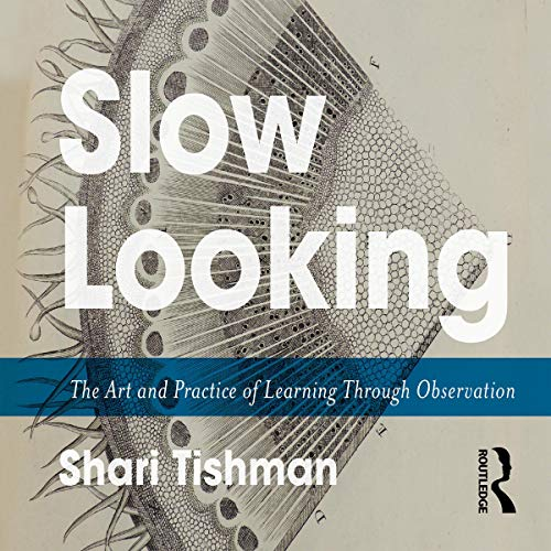 Slow Looking cover art