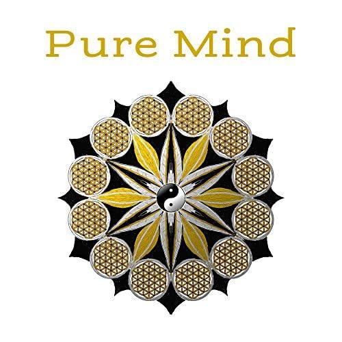 Meditação e Espiritualidade Musica Academia