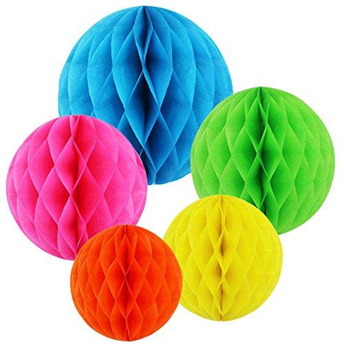 MAMUNU 10 PCS 5 Colors 10 Inch, 6 Inch Honeycomb Tissue Paper Flower Balls, Tissue Paper Pom-poms Flowers Craft Kit for Wedding Birthday Party and Baby Shower Decoration