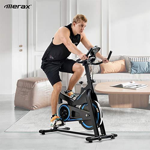 Zebery Bicicleta estática con consola LCD y volante de inercia de 10 kg, asiento y manillar ajustables