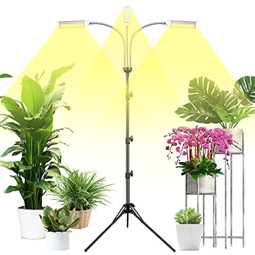 best grow lights for succulents, How to pick the best grow lights for succulents that fit ALL types of cactus,